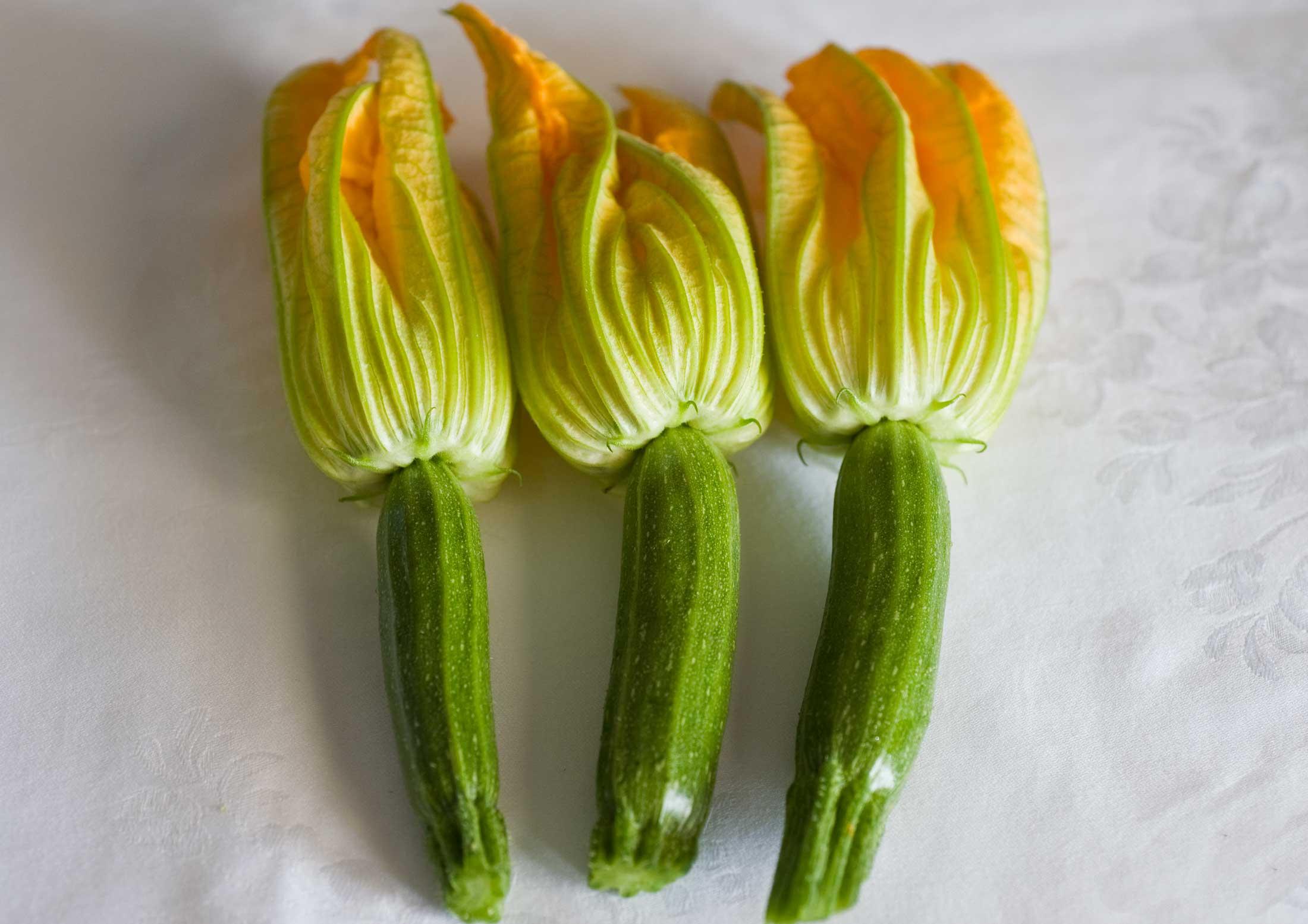 Bucatini zucchine e pomodori pachino